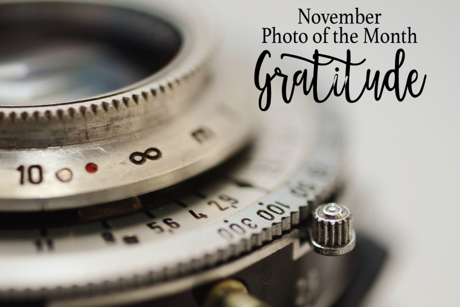 'Gratitude' becomes theme for November Photo of Month contest