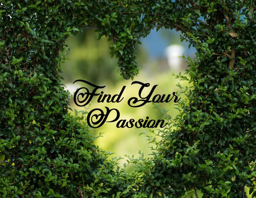 'Find Your Passion' becomes theme for February Photo of Month contest